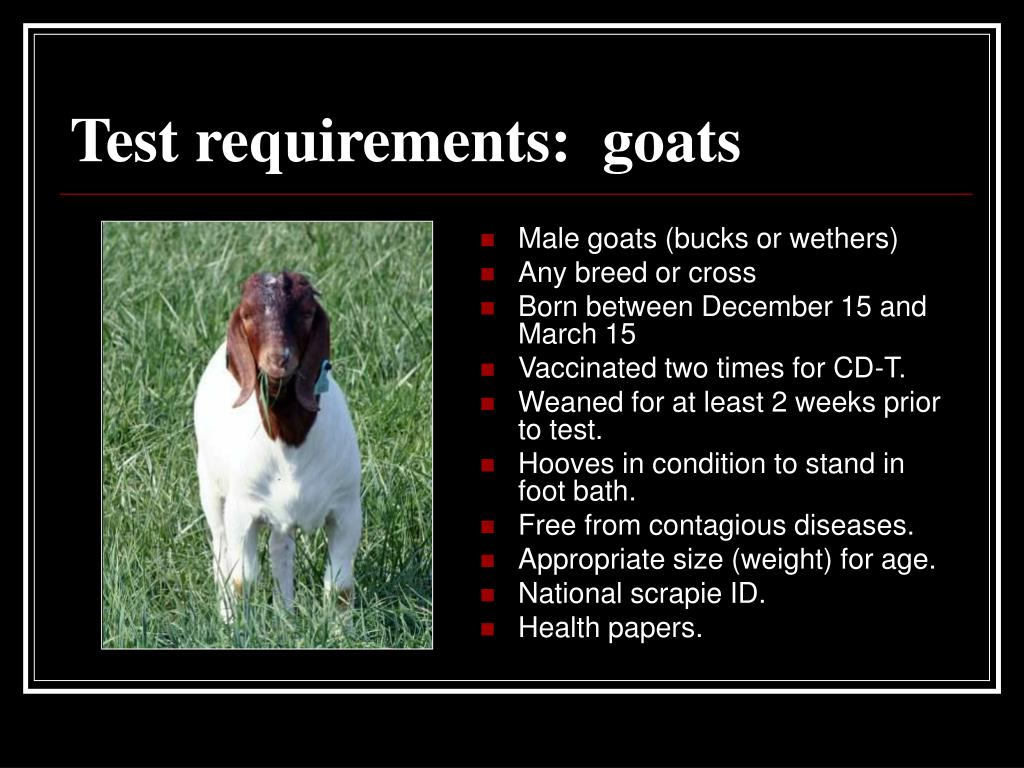 Test requirements:  goats