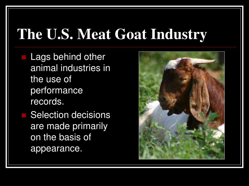 Lags behind other animal industries in the use of performance records.