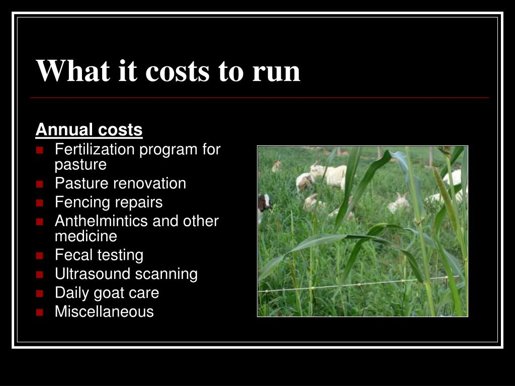 What it costs to run