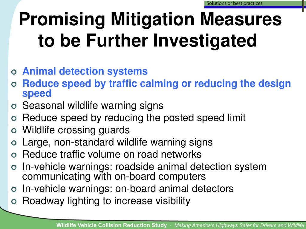 Promising Mitigation Measures
