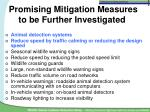 promising mitigation measures to be further investigated