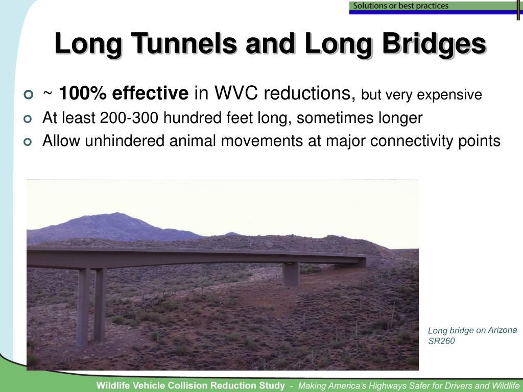 Long Tunnels and Long Bridges
