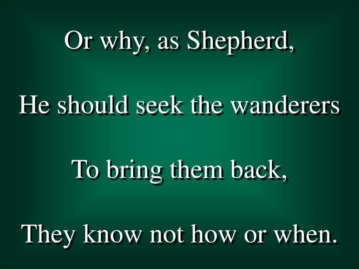 Or why, as Shepherd,