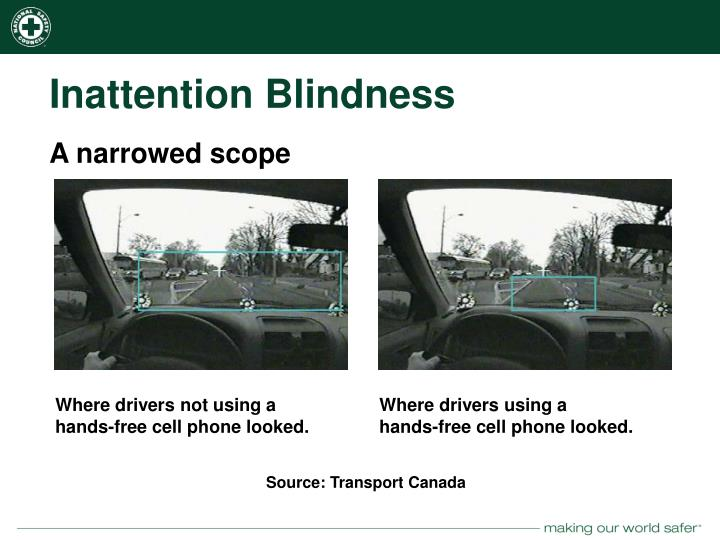 Inattention Blindness