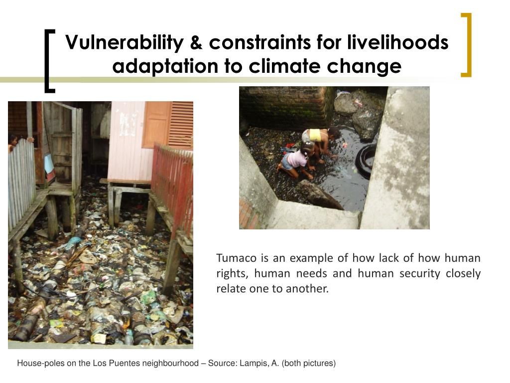 Vulnerability & constraints for livelihoods adaptation to climate change