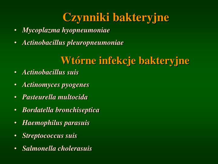 Czynniki bakteryjne