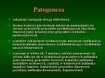 patogeneza4