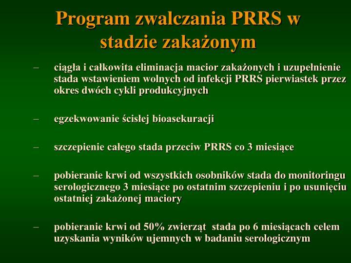 Program zwalczania PRRS w stadzie zakażonym