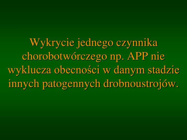 Wykrycie jednego czynnika chorobotwórczego np. APP nie wyklucza obecności w danym stadzie innych patogennych drobnoustrojów.