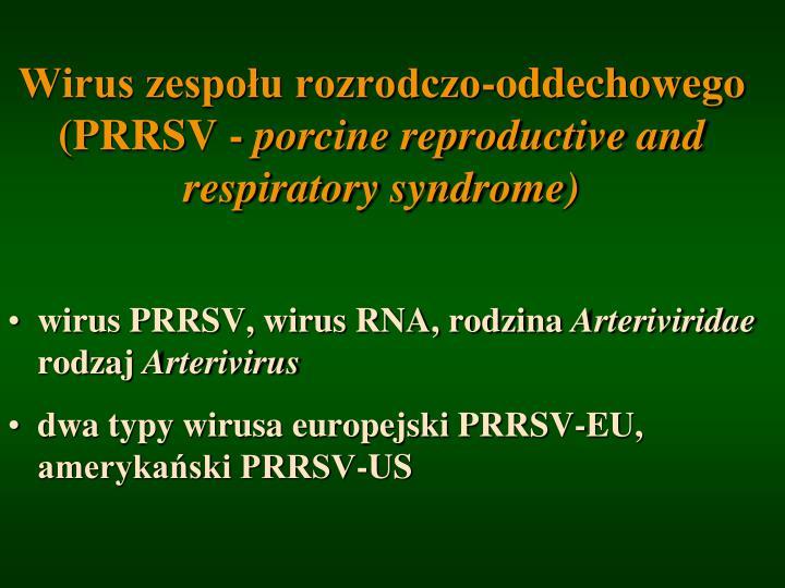 Wirus zespołu rozrodczo-oddechowego (PRRSV -
