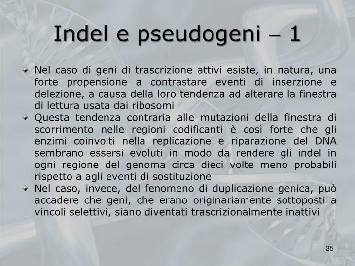 Indel