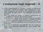 l evoluzione negli organelli 4