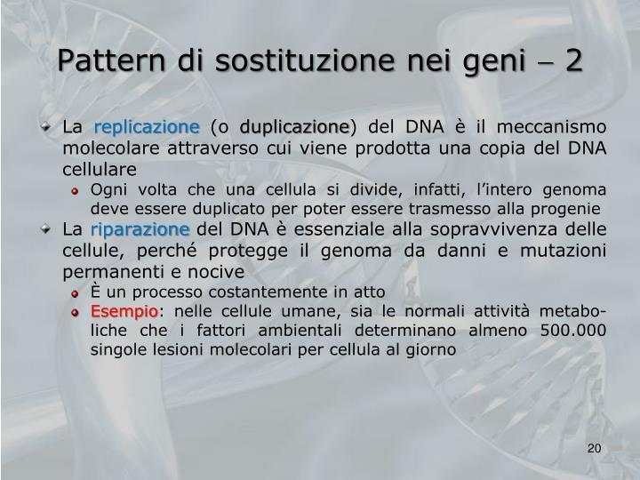 Pattern di sostituzione nei geni