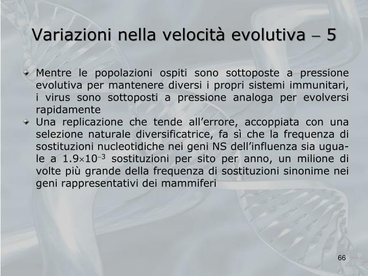 Variazioni nella velocità evolutiva