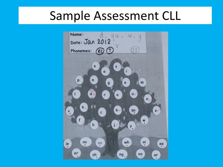 Sample Assessment CLL