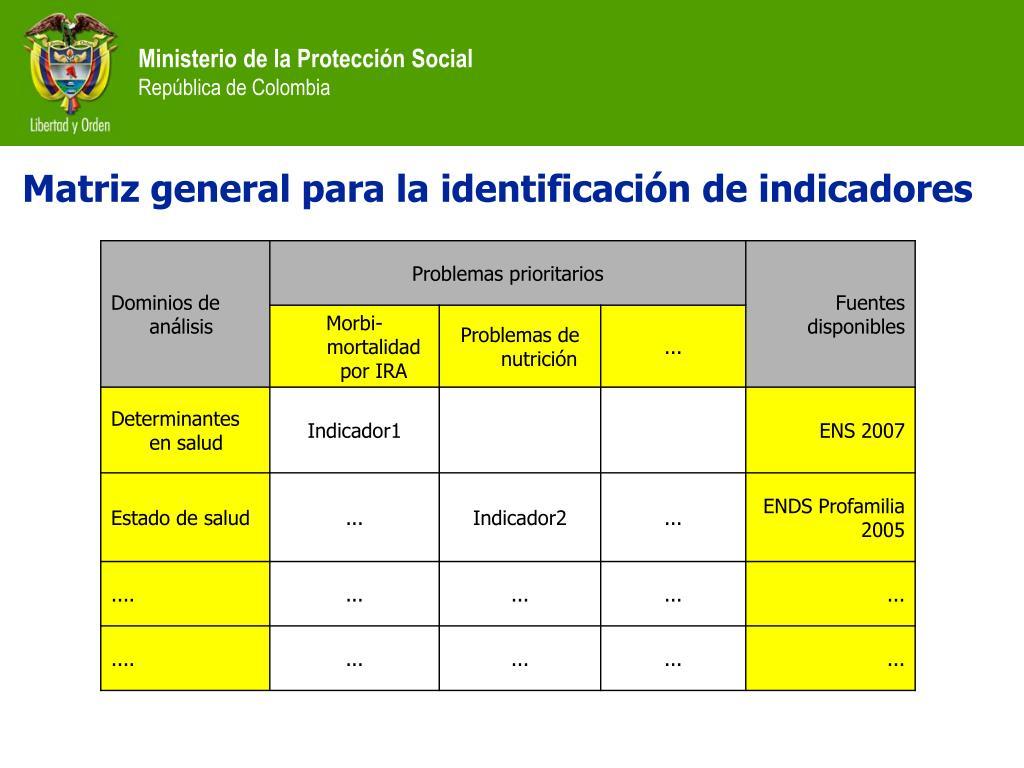 Matriz general para la identificación de indicadores