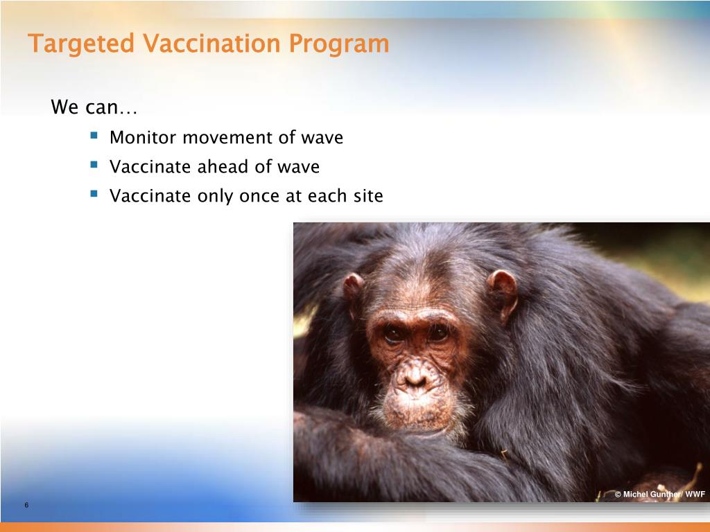 Targeted Vaccination Program