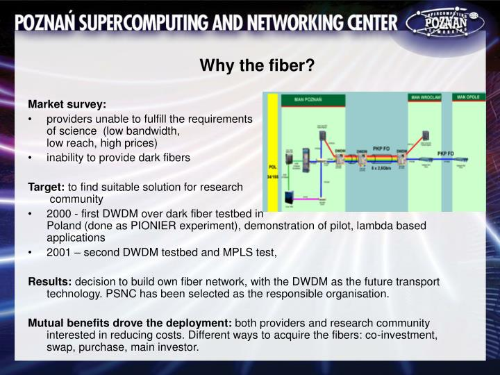 Why the fiber?