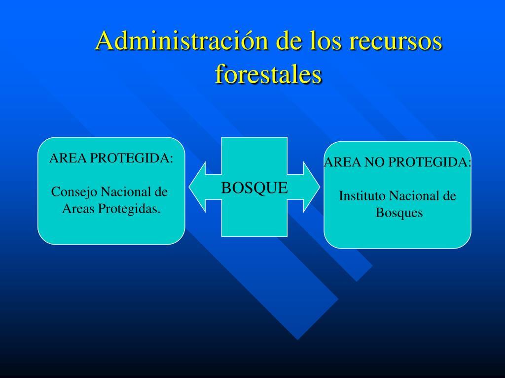Administración de los recursos forestales