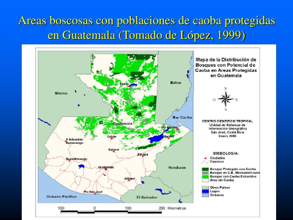 Areas boscosas con poblaciones de caoba protegidas en Guatemala (Tomado de López, 1999)