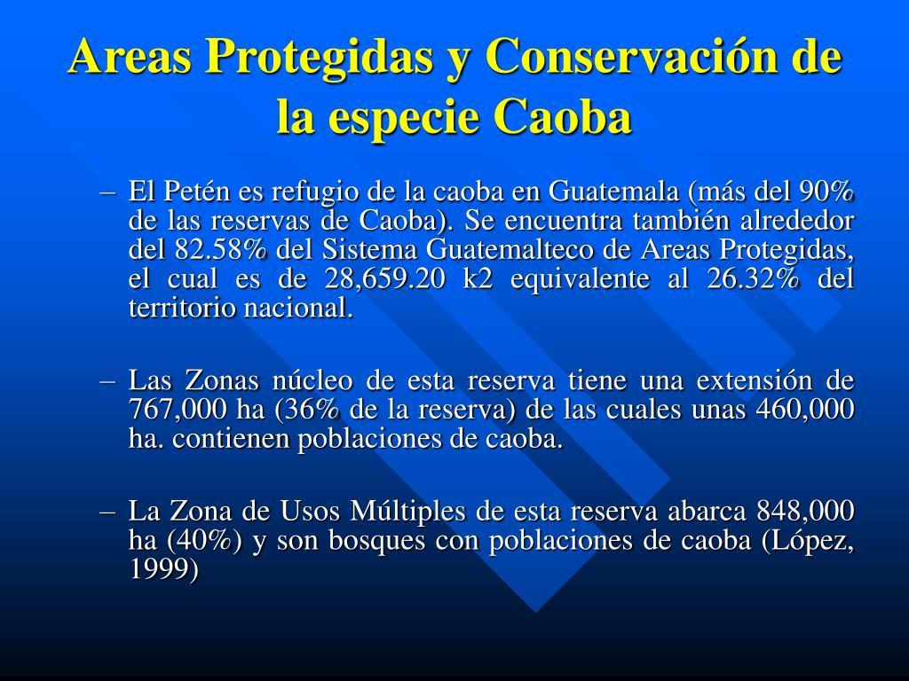 Areas Protegidas y Conservación de la especie Caoba