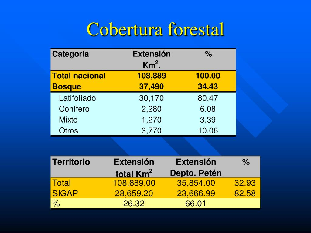 Cobertura forestal