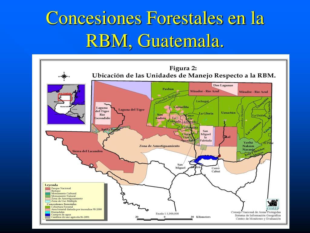 Concesiones Forestales en