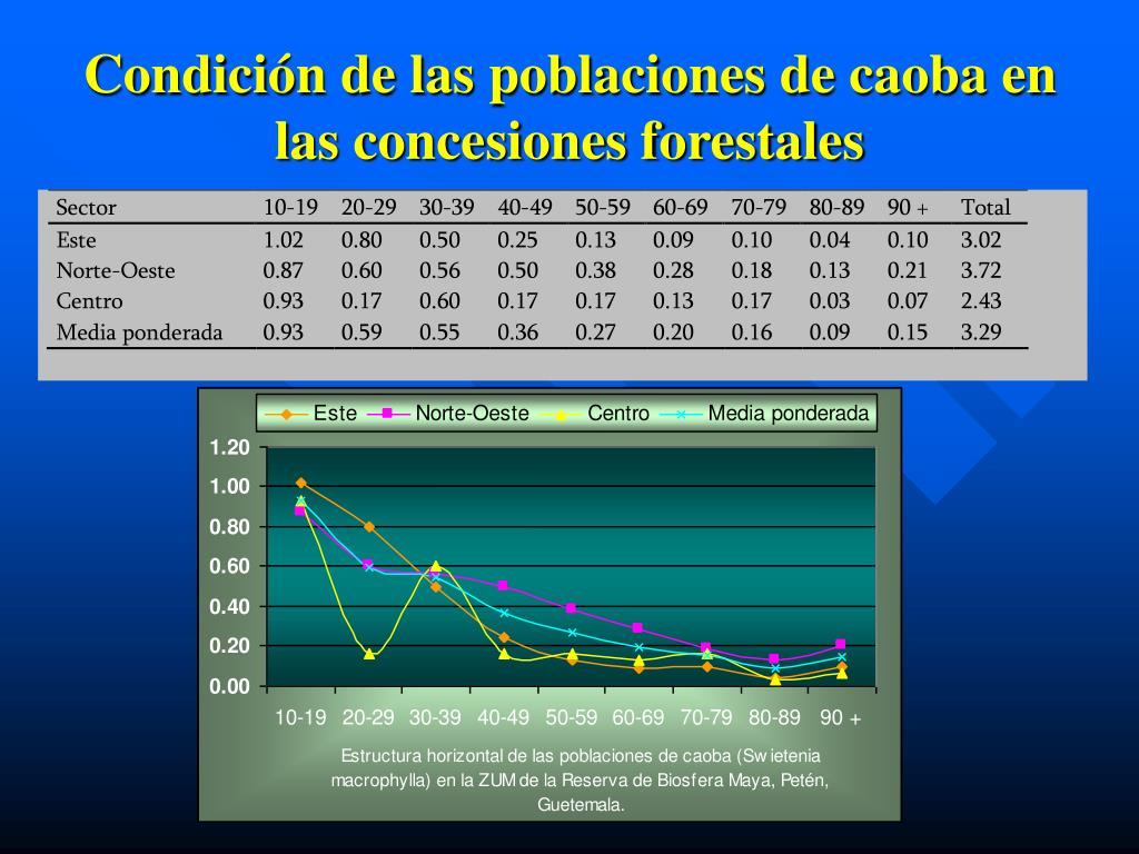 Condición de las poblaciones de caoba en las concesiones forestales