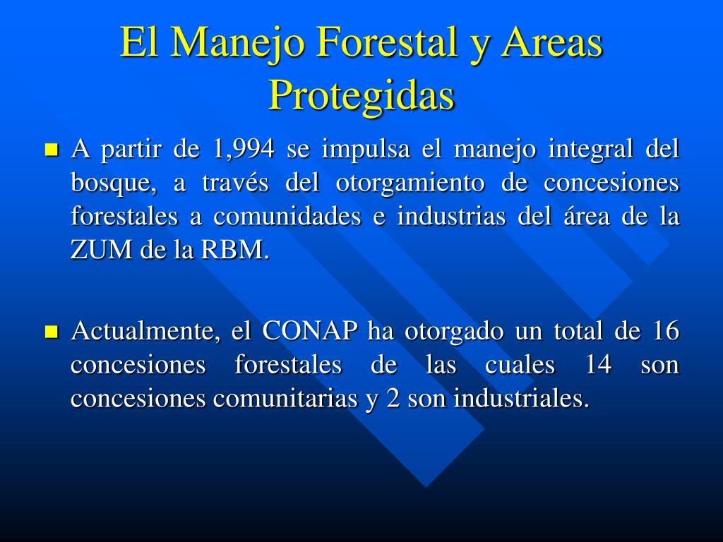 El Manejo Forestal y Areas Protegidas