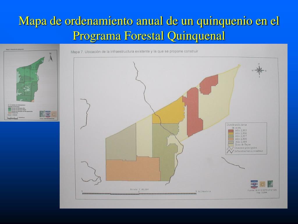 Mapa de ordenamiento anual de un quinquenio en el Programa Forestal Quinquenal