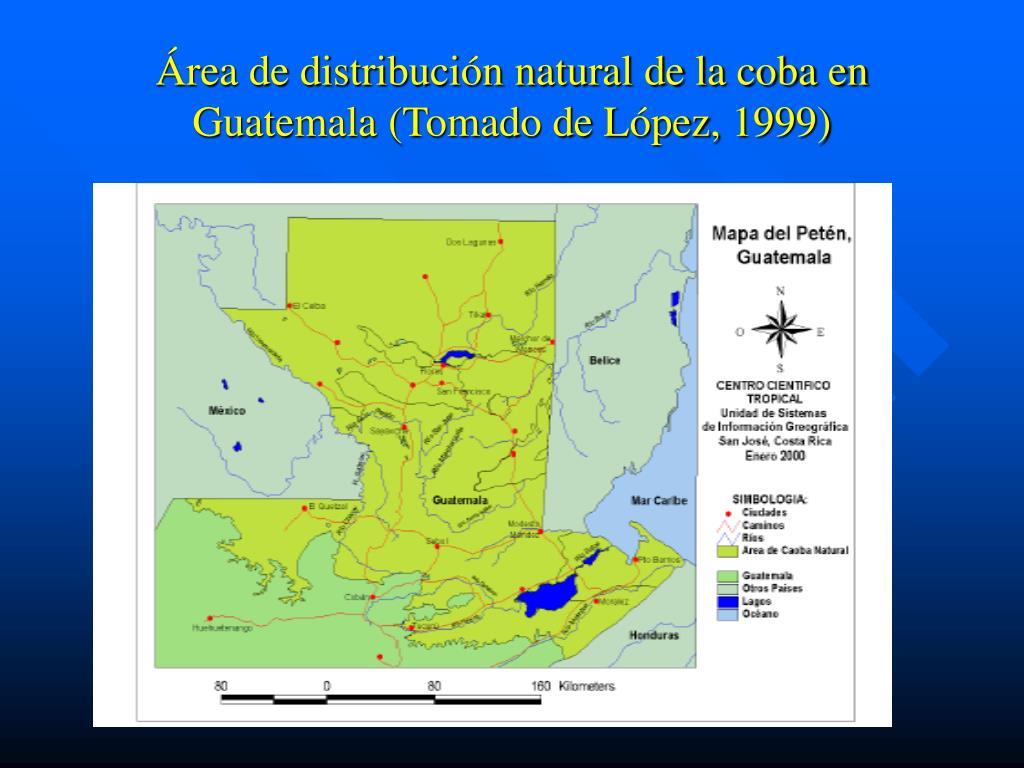 Área de distribución natural de la coba en Guatemala (Tomado de López, 1999)