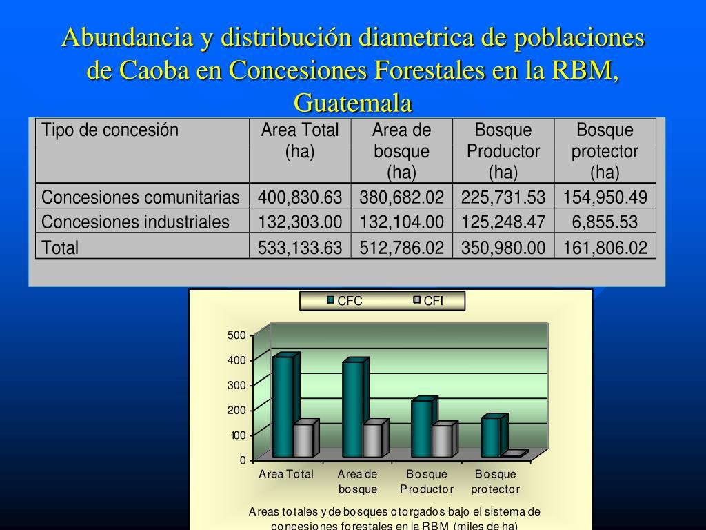 Abundancia y distribución diametrica de poblaciones de Caoba en