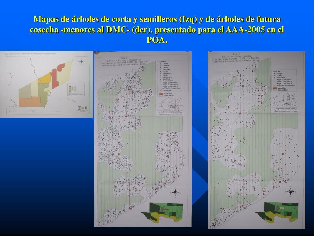 Mapas de árboles de corta y semilleros (Izq) y de árboles de futura cosecha -menores al DMC- (der), presentado para el AAA-2005 en el POA.