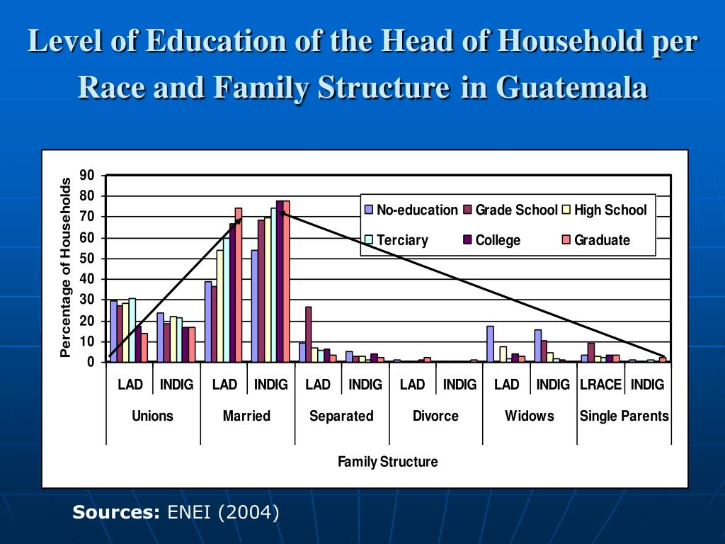 Level of Education of the Head of Household per Race and Family Structure