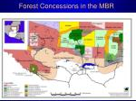 forest concessions in the mbr