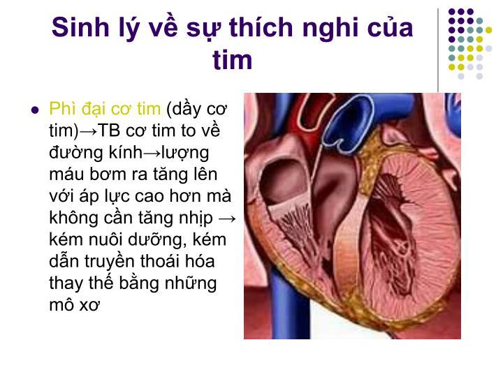 Sinh lý về sự thích nghi của tim