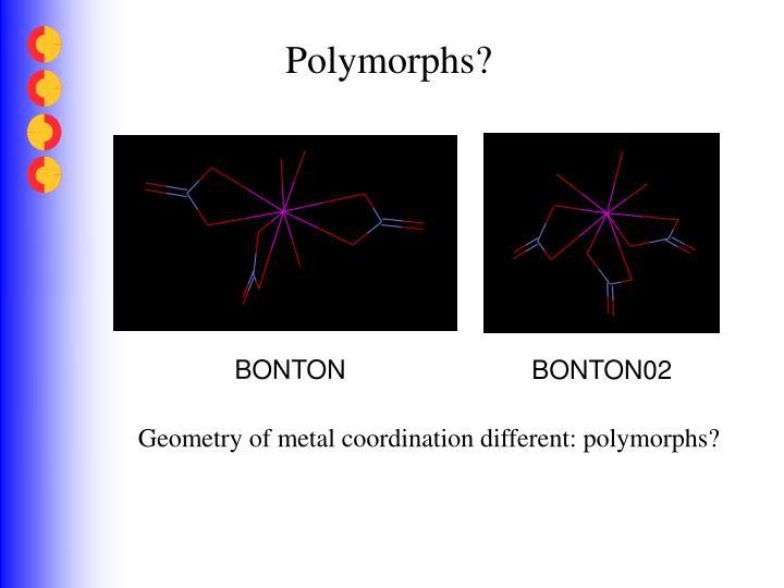 Polymorphs?