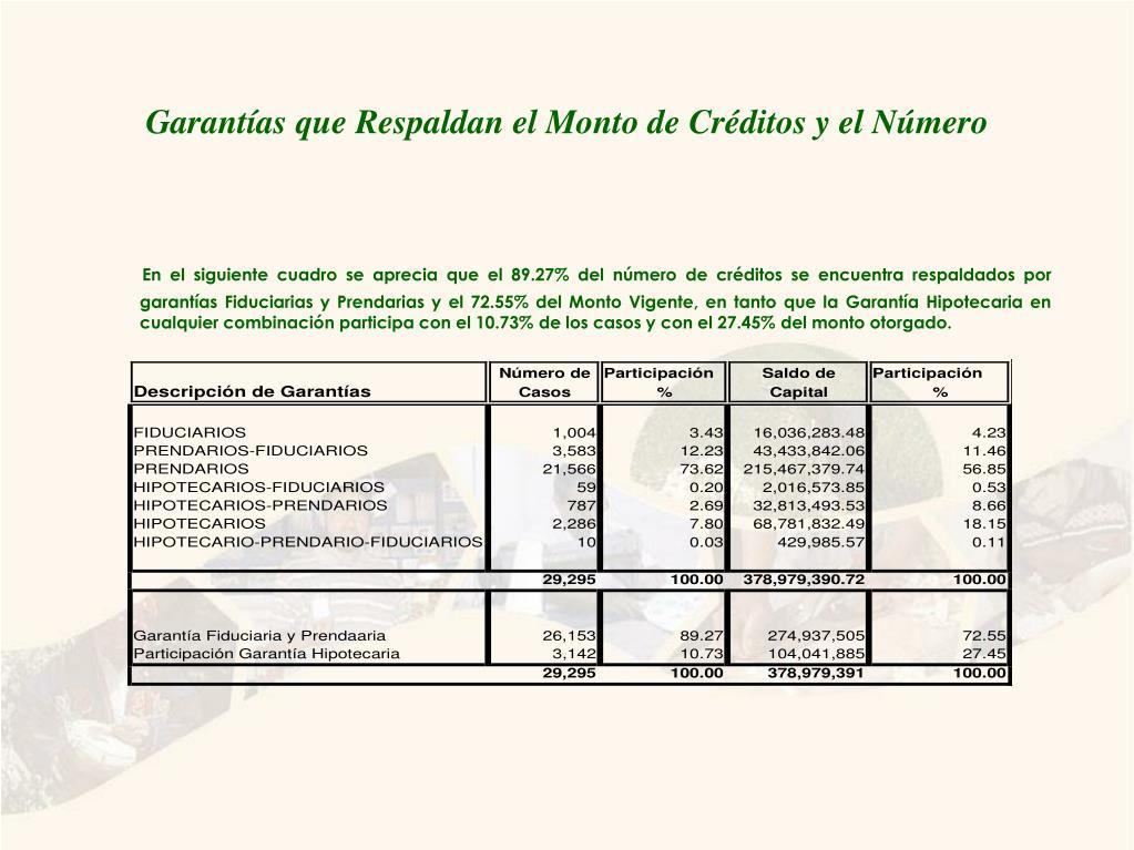 Garantías que Respaldan el Monto de Créditos y el Número