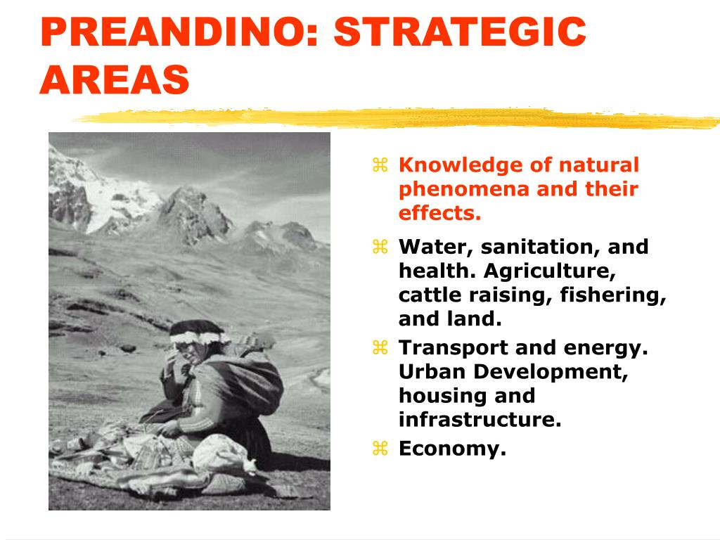 PREANDINO: STRATEGIC AREAS