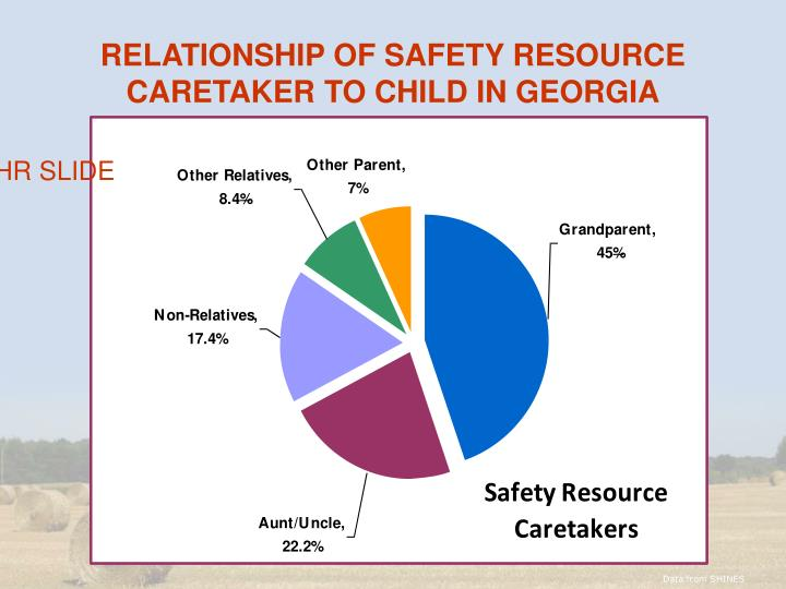 RELATIONSHIP OF SAFETY RESOURCE CARETAKER TO CHILD IN GEORGIA