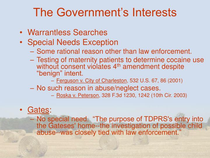 The Government's Interests