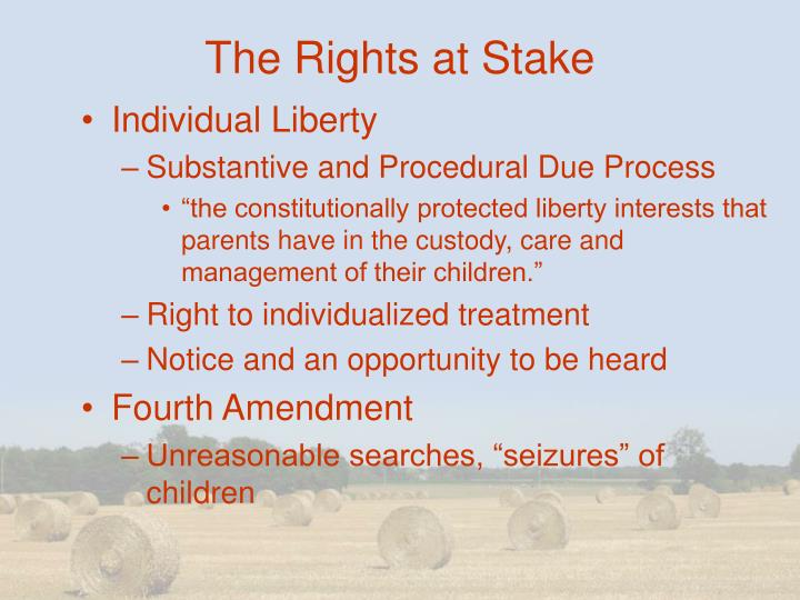 The Rights at Stake