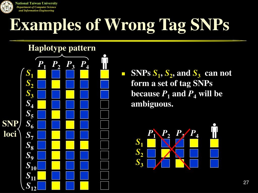 Examples of Wrong Tag SNPs