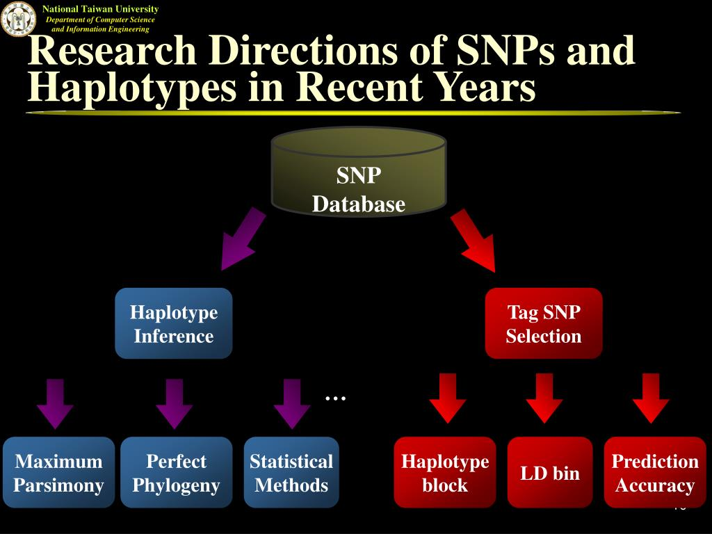 Research Directions of SNPs and Haplotypes in Recent Years