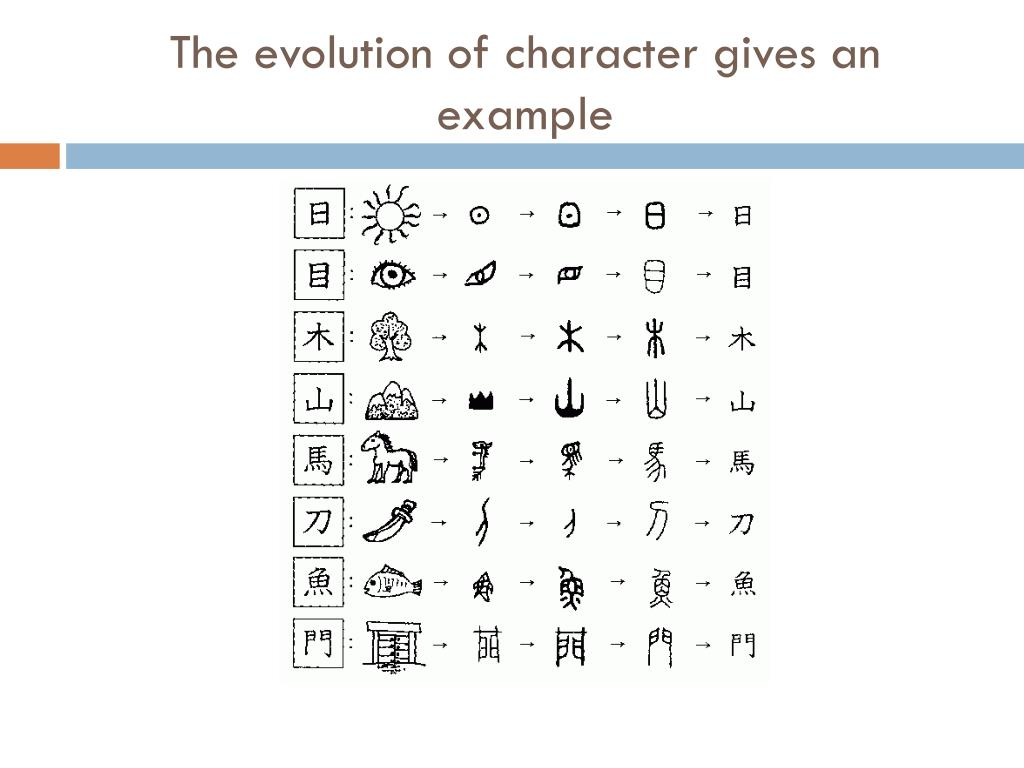 The evolution of character gives an example
