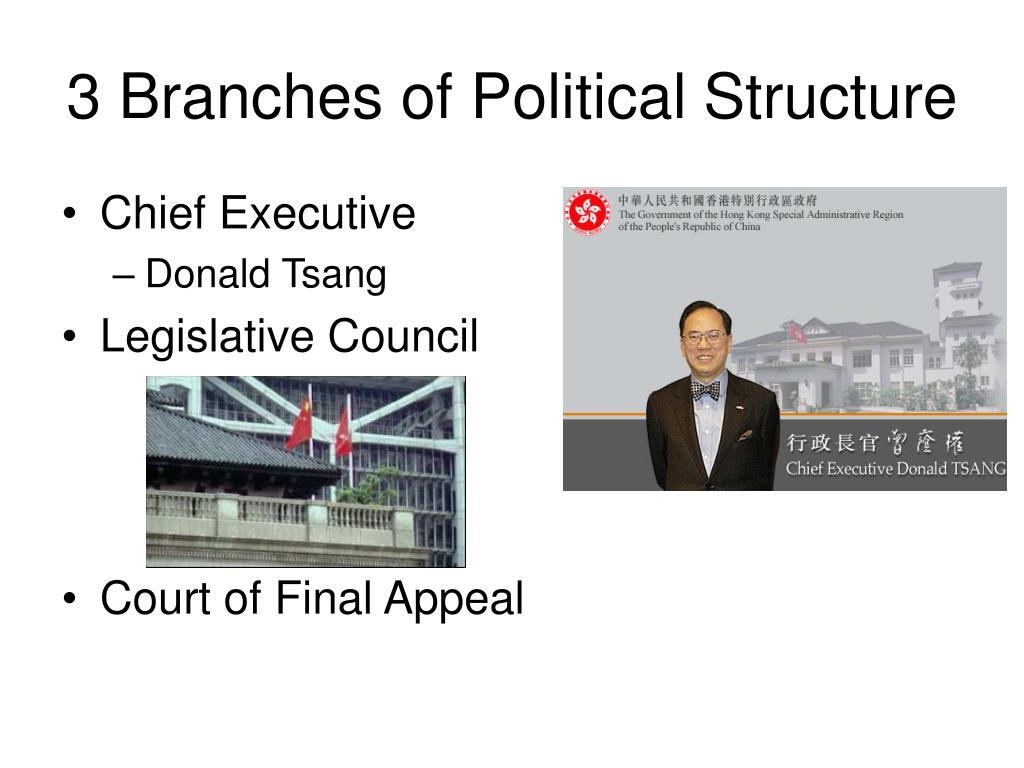 3 Branches of Political Structure