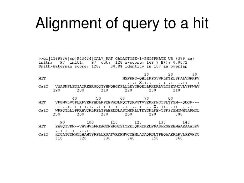 Alignment of query to a hit