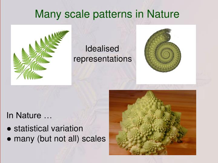 Many scale patterns in Nature