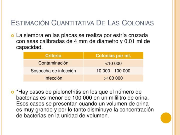 Estimación Cuantitativa De Las Colonias