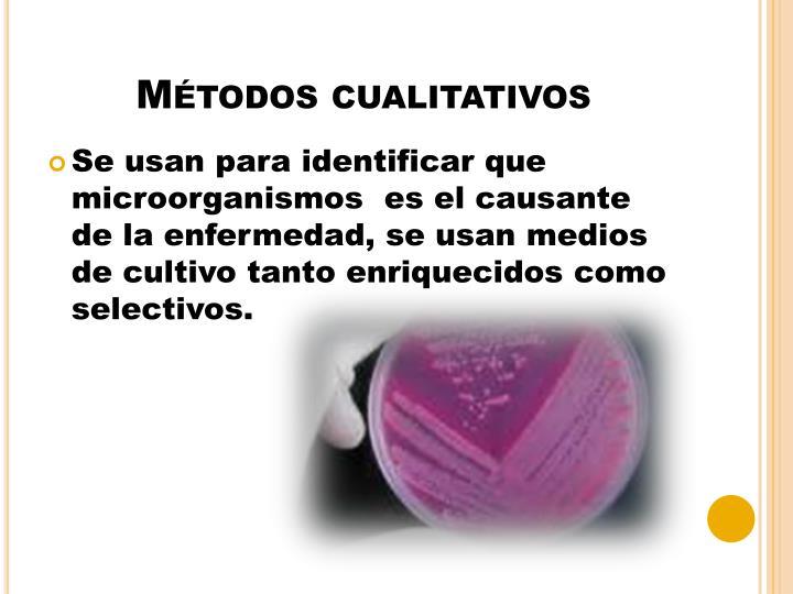 Métodos cualitativos